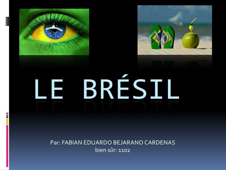 LE BRÉSIL Par: FABIAN EDUARDO BEJARANO CARDENAS                bien sûr: 1102