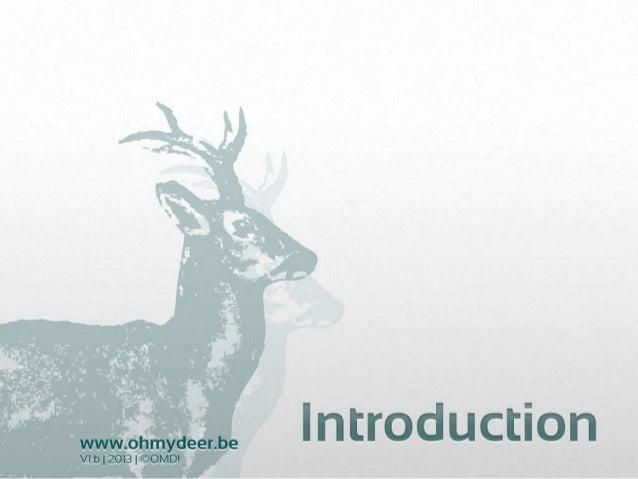 Le briefing creatif par Oh my deer!