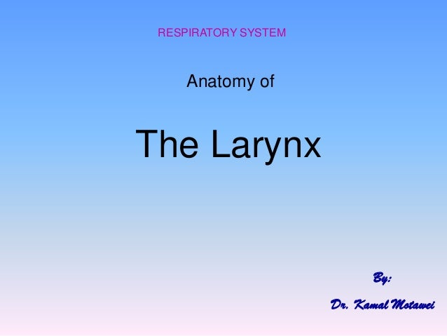 Anatomy of  The Larynx  RESPIRATORY SYSTEM  By:  Dr. Kamal Motawei