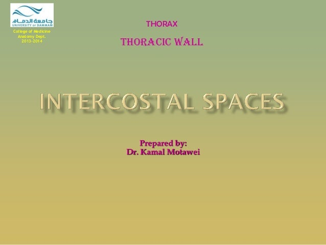 Prepared by:  Dr. Kamal Motawei  THORAX  Thoracic Wall  College of Medicine Anatomy Dept. 2013-2014