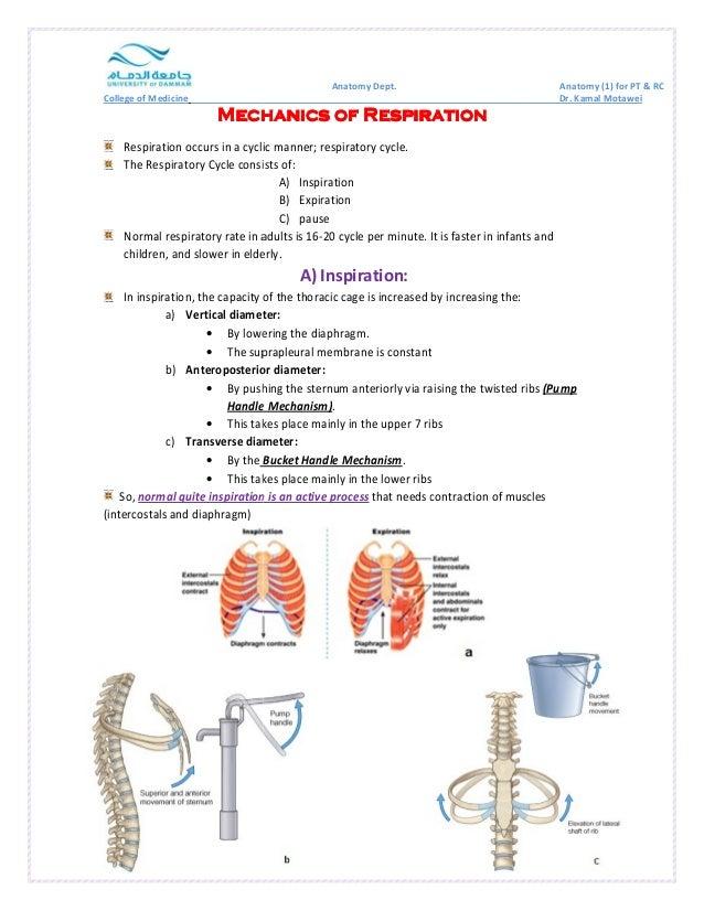 College of Medicine  Mechanics MMMeeeccchhhaaannniiicccsss ooooffff RRRReeeessssppppiiiirrrraaaattttiiiioooonnnn  Respirat...