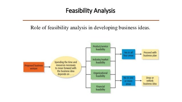 Risk Assessment in Economic Feasibility Analysis: The Case ...