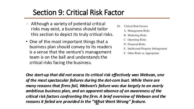 critical risk in business plan
