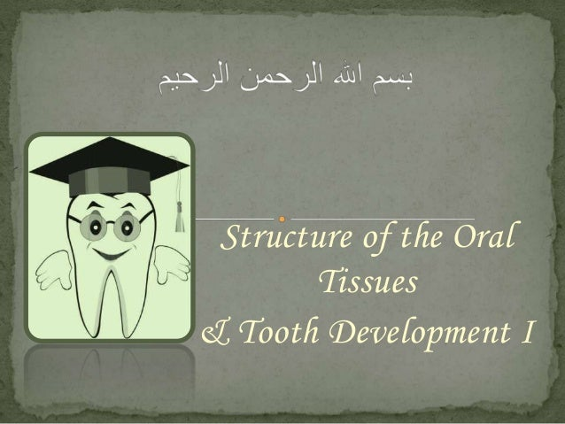 Structure of the Oral Tissues & Tooth Development I