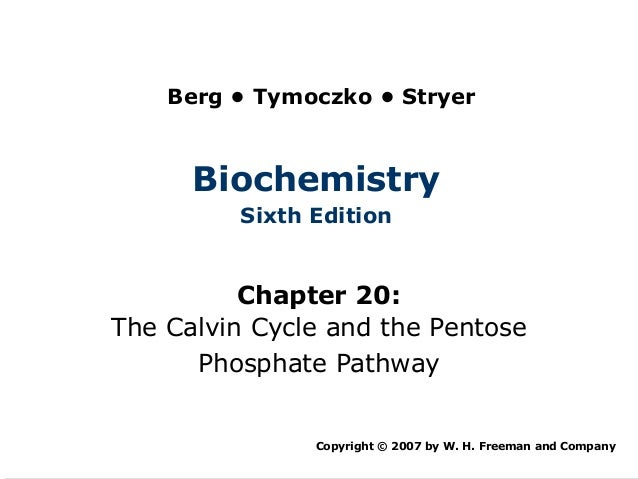 Berg • Tymoczko • Stryer      Biochemistry         Sixth Edition          Chapter 20:The Calvin Cycle and the Pentose     ...