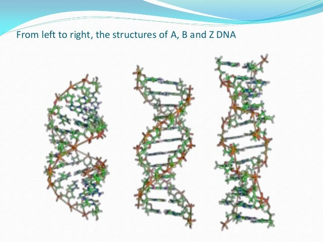 introduction to molecular biology Introduction to criminal justice juvenile delinquency law enforcement,  student companion website to accompany molecular biology: genes to proteins burton e .