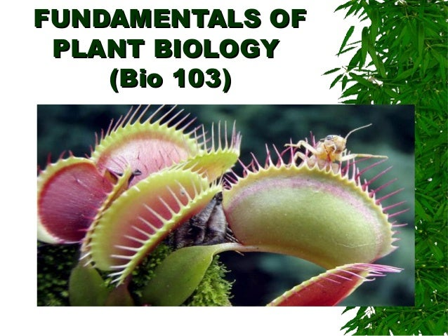 FUNDAMENTALS OFFUNDAMENTALS OF PLANT BIOLOGYPLANT BIOLOGY (Bio 103)(Bio 103) Nanette Hope N. Sumaya, MSc Department of Bio...