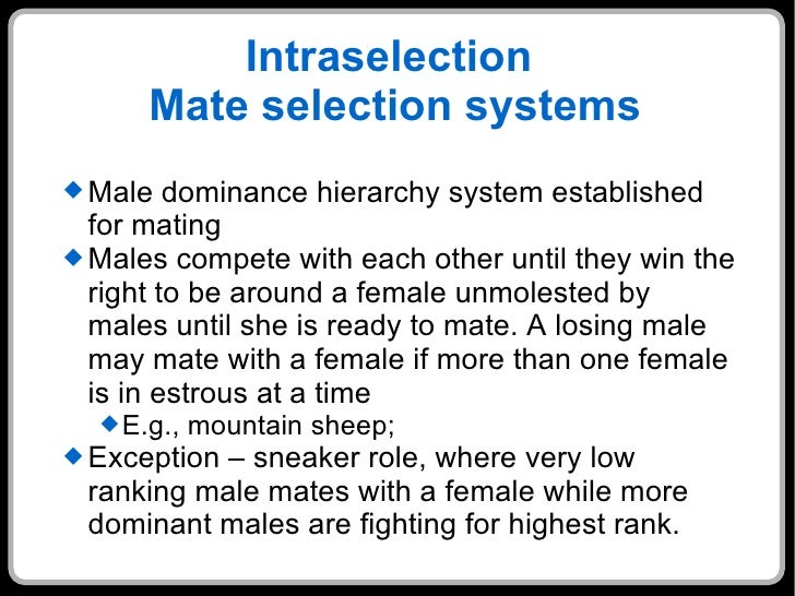 Sexual dominate your male mate