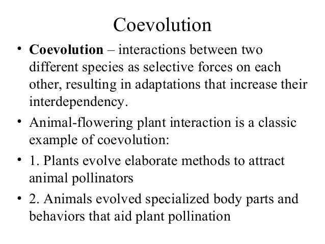 Pollination Reproduction In Plants