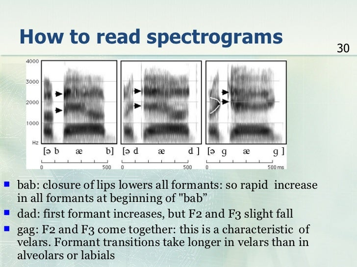 how to read a spectrogram
