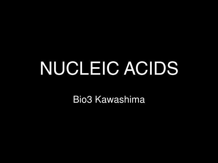 NUCLEIC ACIDS<br />Bio3 Kawashima<br />
