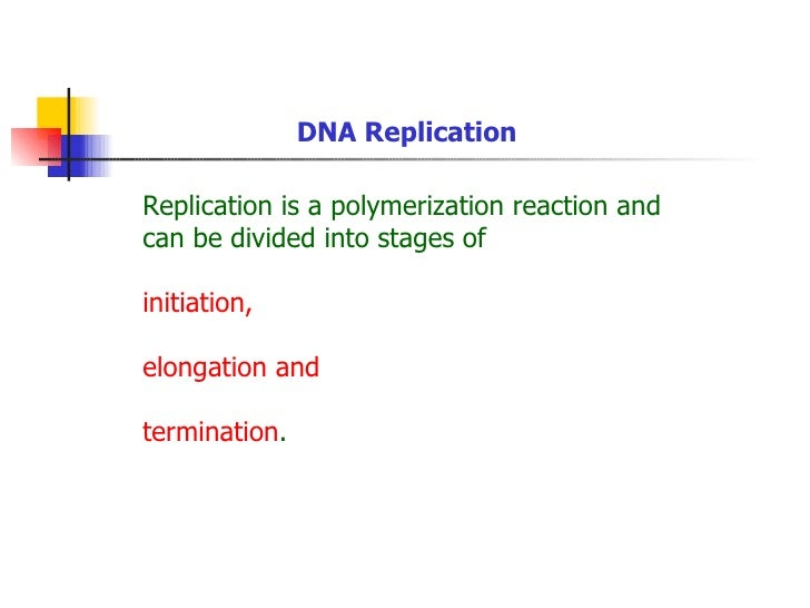 DNA ReplicationReplication is a polymerization reaction andcan be divided into stages ofinitiation,elongation andterminati...