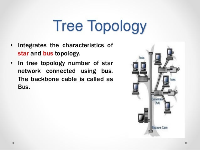 networks topologies lec 2