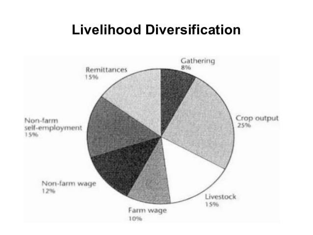 The Development of Statistics on the Informal Economy