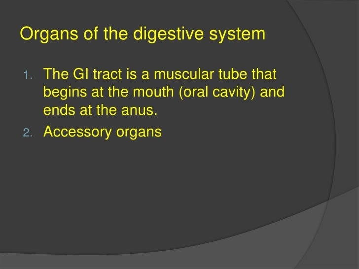The GI tract is a muscular tube that begins at the mouth (oral cavity) and ends at the anus.<br />Accessory organs<br />Or...