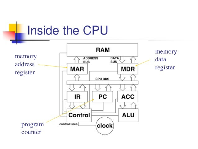 The basic organization of computers 10 memory address register memory data register program counter ccuart Gallery