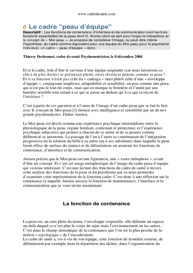"""www.cadredesante.com  Le cadre """"peau d'équipe""""  Descriptif : Les fonctions de contenance, d'interface et de communication ..."""