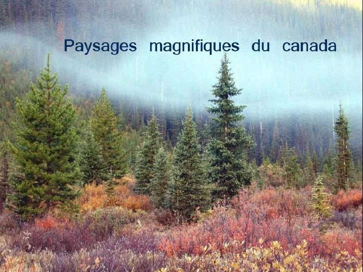 Voici des paysages  magnifiques du Canada