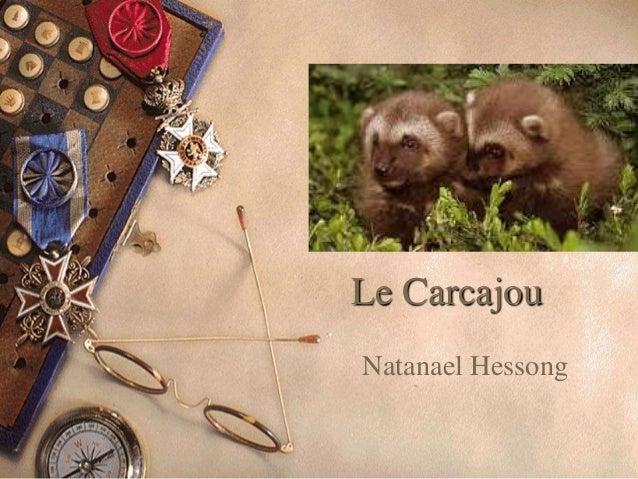 Le CarcajouNatanael Hessong