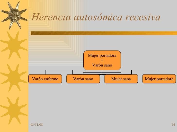 Herencia autosómica recesiva Mujer portadora + Varón sano Varón enfermo Varón sano Mujer sana Mujer portadora