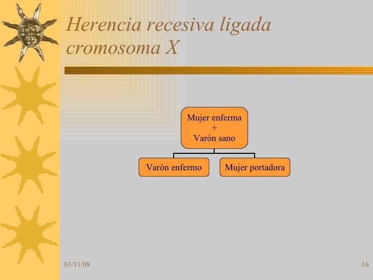 Herencia recesiva ligada cromosoma X Mujer enferma + Varón sano Varón enfermo Mujer portadora