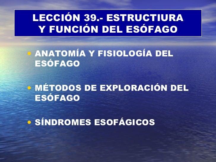 <ul><li>ANATOMÍA Y FISIOLOGÍA DEL ESÓFAGO </li></ul><ul><li>MÉTODOS DE EXPLORACIÓN DEL ESÓFAGO </li></ul><ul><li>SÍNDROMES...