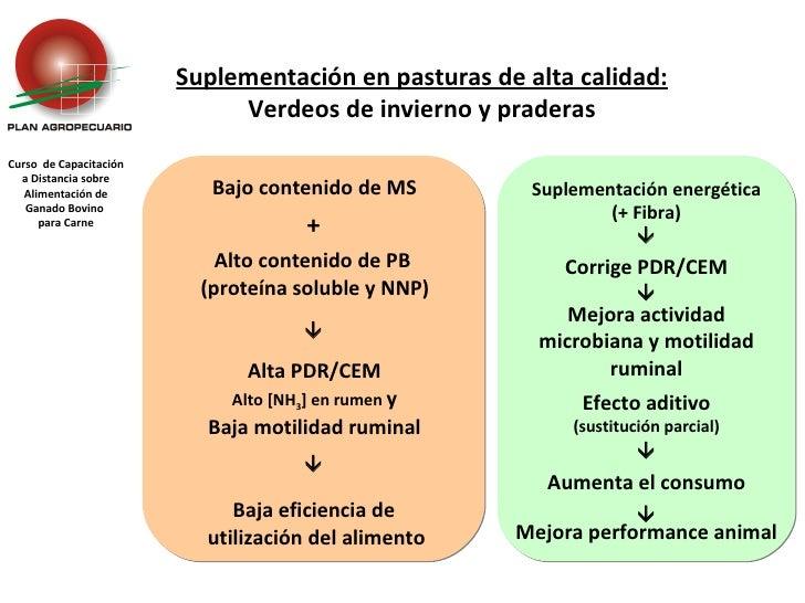 Curso  de Capacitación a Distancia sobre Alimentación de Ganado Bovino  para Carne Suplementación en pasturas de alta cali...