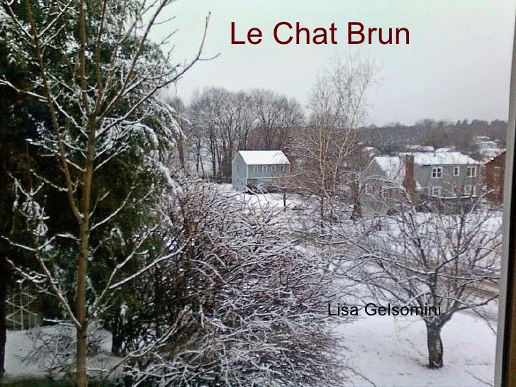Le Chat Marron Le Chat Brun Lisa Gelsomini