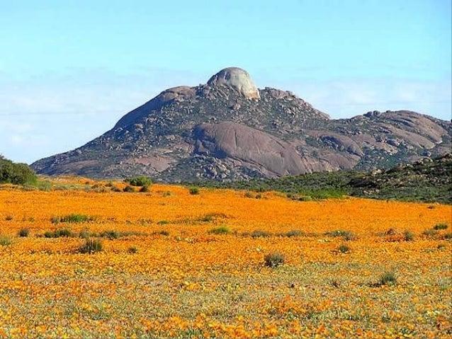 Le Chili est beau du nord au sud et grâce à sa situation géographique unique, on peut atteindre en quelques heures la mont...