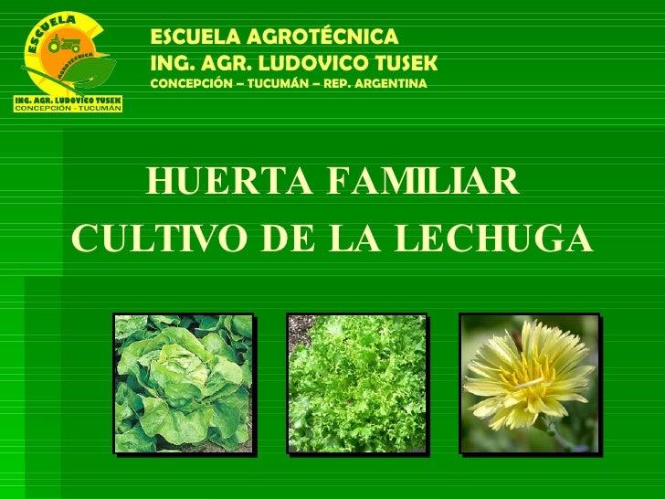 HUERTA FAMILIAR CULTIVO DE LA LECHUGA ESCUELA AGROTÉCNICA ING. AGR. LUDOVICO TUSEK CONCEPCIÓN – TUCUMÁN – REP. ARGENTINA