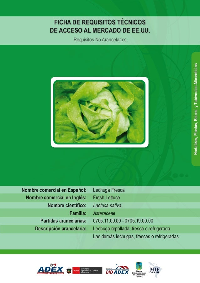Lechuga Fresca Fresh Lettuce Lactuca sativa Asteraceae 0705.11.00.00 - 0705.19.00.00 Lechuga repollada, fresca o refrigera...