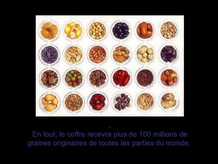 . En tout, le coffre recevra plus de 100 millions de graines originaires de toutes les parties du monde.
