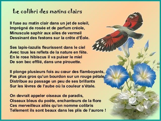 Le colibri des matins clairs Il fuse au matin clair dans un jet de soleil, Imprégné de rosée et de parfum créole, Minuscul...