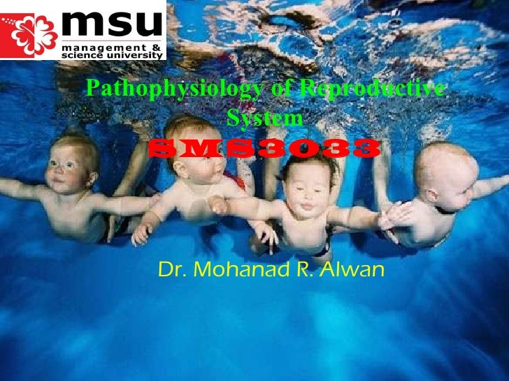 Dr. Mohanad R. Alwan Pathophysiology of Reproductive System SMS3033