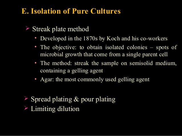 isolation of pure cultures by dilution View lab report - techniques for isolation of pure cultures from bio 275 at   this can be done by doing a streak plate or diluting the mixture and using a.