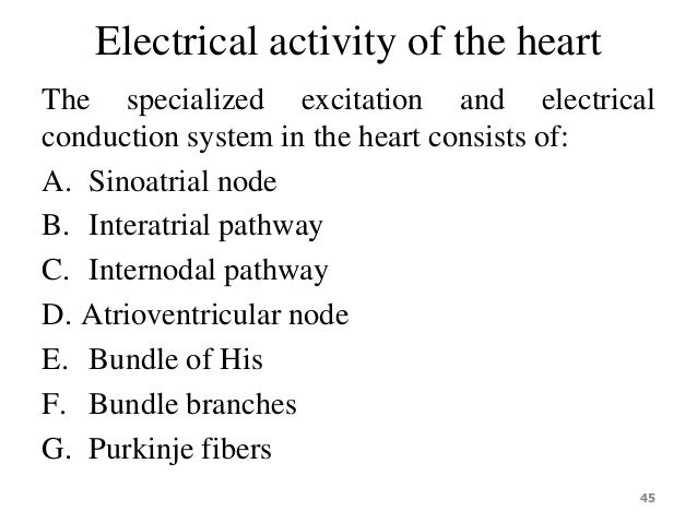 electrical and electrochemical activities of heart essay We will write a custom essay sample on electrical essay examples   electrical and electrochemical activities of heart electrical engineer.