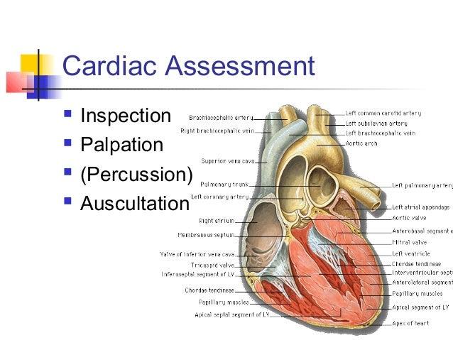 Lect 1 physical assessment acute care nursing program 2005