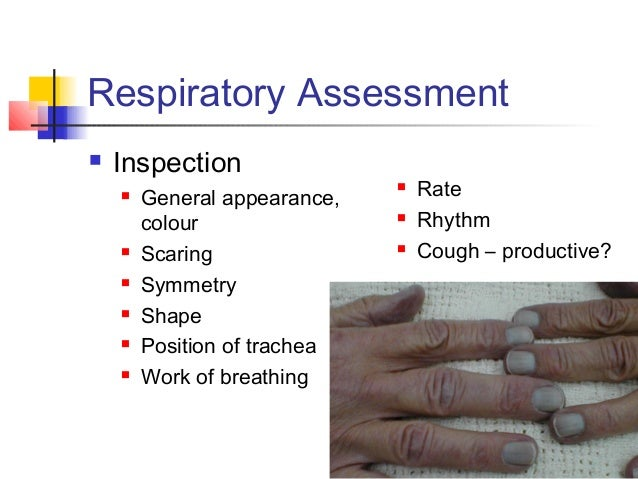 respiratory assessment Checklist 19: focused respiratory system assessment disclaimer: always review and follow your hospital policy regarding this specific skill safety considerations.