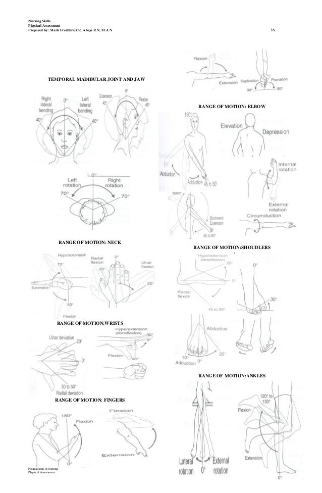 lect 1 physical assessment hand outs, Skeleton