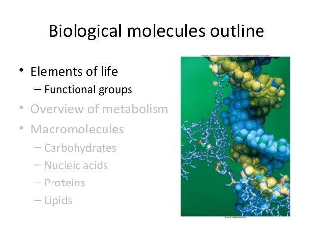 Chlorophyll and polar groups