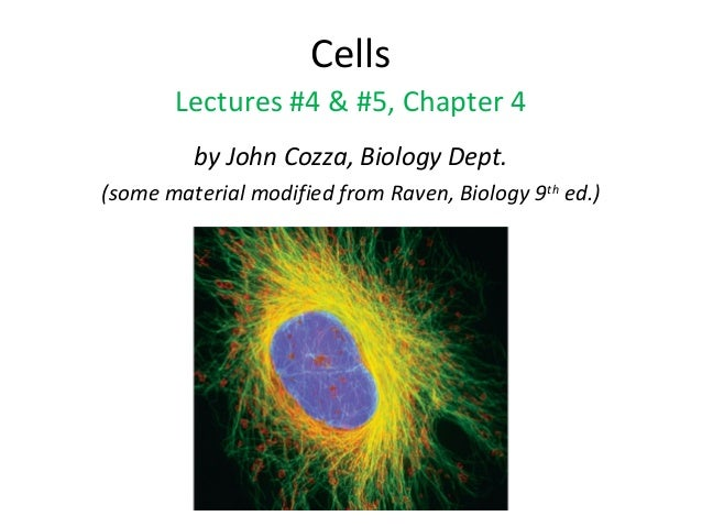 Cells Lectures #4 & #5, Chapter 4 by John Cozza, Biology Dept. (some material modified from Raven, Biology 9th ed.)