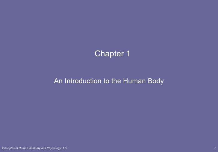 Chapter 1 An Introduction to the Human Body
