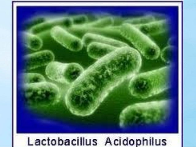 Microbes are Essential to Life