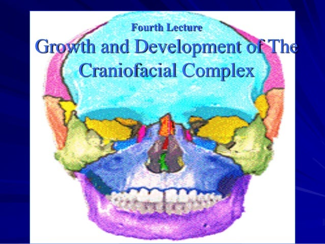 Fourth Lecture  Growth and Development of The Craniofacial Complex