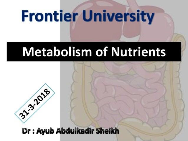Metabolism of Nutrients
