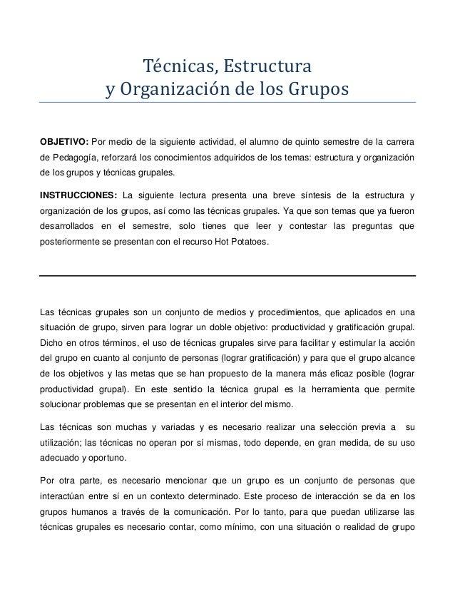 Técnicas, Estructura                y Organización de los GruposOBJETIVO: Por medio de la siguiente actividad, el alumno d...
