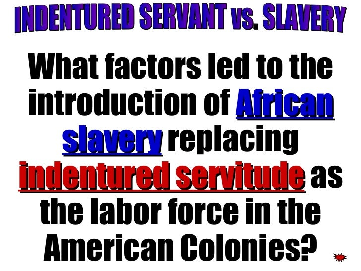 the lives of two indentured slaves Historian nini rodgers has written that irish indentured servants were not slaves, but slaves did not, and the two of-two-plantations-slave-life-and.
