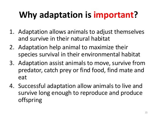 Lecture animal adaptation