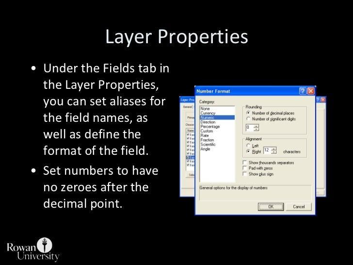 Layer Properties<br />Under the Fields tab in the Layer Properties, you can set aliases for the field names, as well as de...