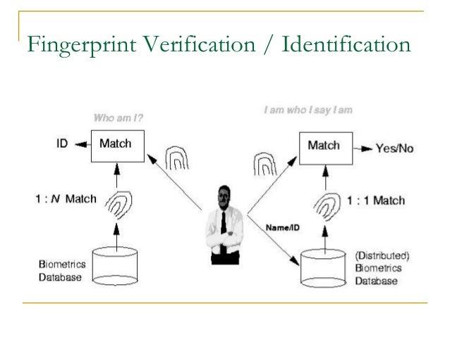 Fingerprint Verification / Identification